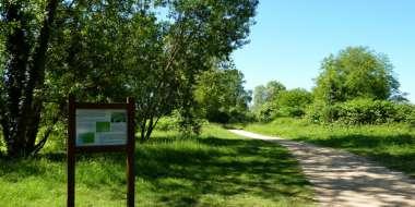 Balade sur le sentier du ver-vert