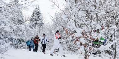 Skier ou raquettes au Markstein ou au Grand Ballon.