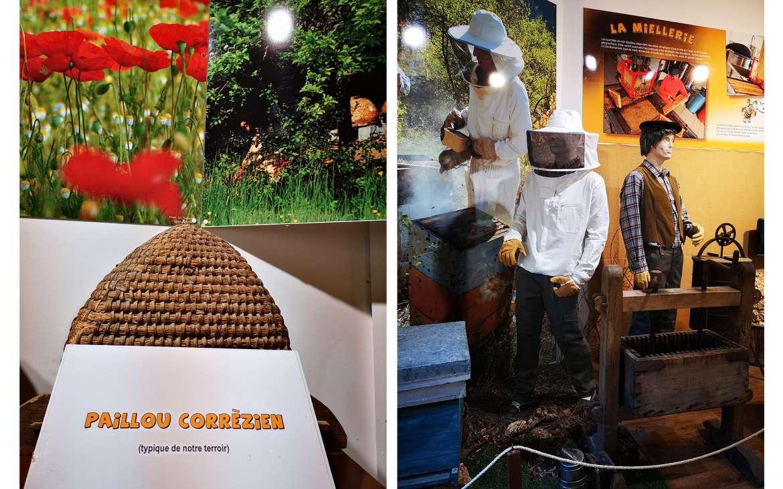 Un musée complet sur le miel et sa fabrication