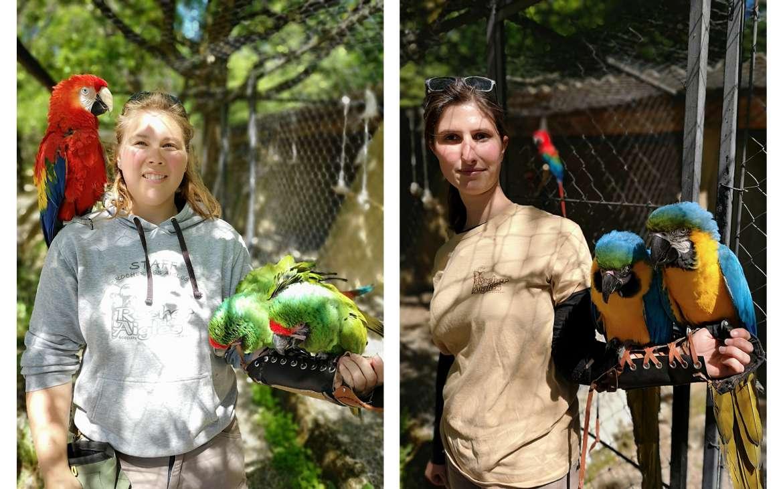 Les fauconnières Oriane et Justine