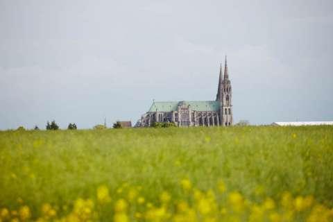 Cathédrales de Chartres