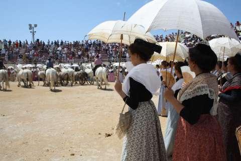 Festival Lo Festo Vierginenco